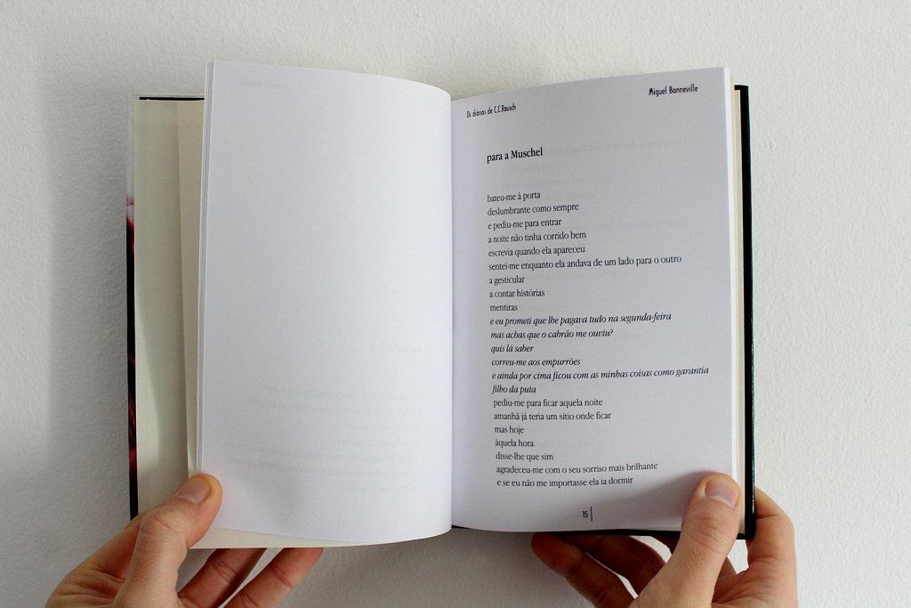 os-diarios-de-cc-rausch-poema.jpg